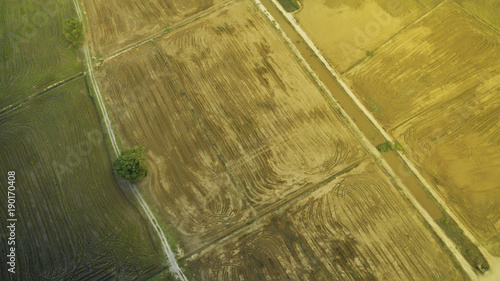Foto op Aluminium Honing Amazing sunrise scenery at paddy field view from top.Aerial Photography.