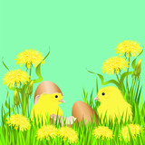 Two chicks with egg shells and yellow dandellions. Hand drawn vector illustration on green background for Easter and birthday greetings.