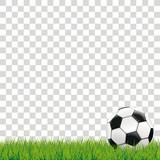Football Grass Transparent - 190194608