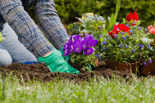 Sticker Planting flowers in the garden home