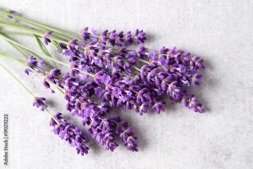 Lavender. - 190211222