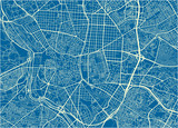 Blue and White vector city map of Madrid with well organized separated layers. - 190217211