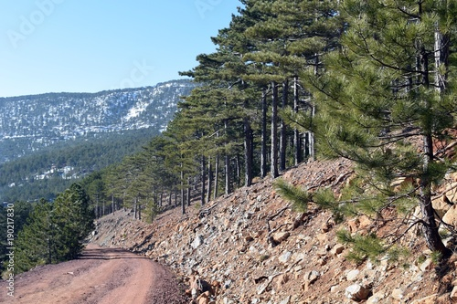 Aluminium Khaki Snowy winter road. Beautiful winter landscape in the mountain forest Agla. Marmaris. Turkey