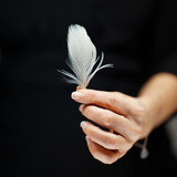 woman hand holding exotic bird feather, sensual studio shot with black background - 190226277