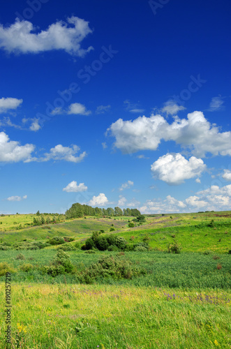 Aluminium Zomer Sunny summer landscape with green hills and growing trees.Blue sky with beautiful clouds over the fields and meadows.
