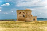 Torre Guaceto in Puglia - 190273616