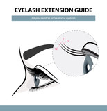 Fototapety Eyelash extension guide. Eyelashes grow. Eyelid. Side view. Infographic vector illustration. Training poster