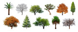 Set of green trees isolated on white background. Different kinds of tree collection - 190277868