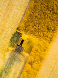 Aerial view of combine harvester on rapeseed field. Agriculture and biofuel production theme. - 190301011