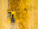 Aerial view of combine harvester on rapeseed field. Agriculture and biofuel production theme. - 190301065