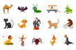 Animals icon set, cartoon style - 190301669