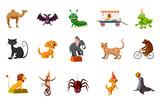Animals icon set, ca...