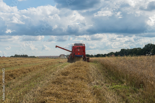 Aluminium Trekker Grain is being cut by combine-harvester during harvest time in summer in Poland