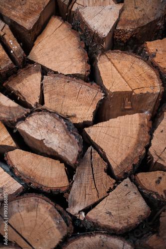 Foto op Canvas Brandhout textuur Wooden Logs