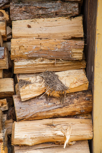 Foto op Plexiglas Brandhout textuur Pile of firewood for winter
