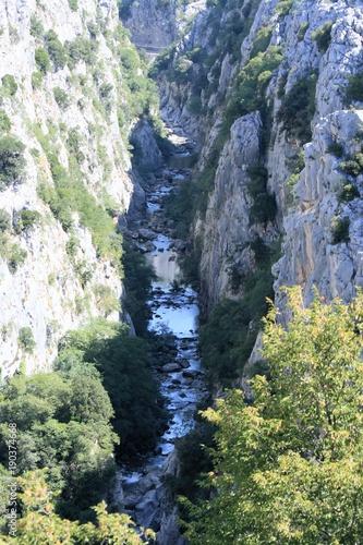Fotobehang Olijf Canyon of the Cetina river, Croatia