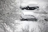 Winter branchs and car covered with snow - 190375099