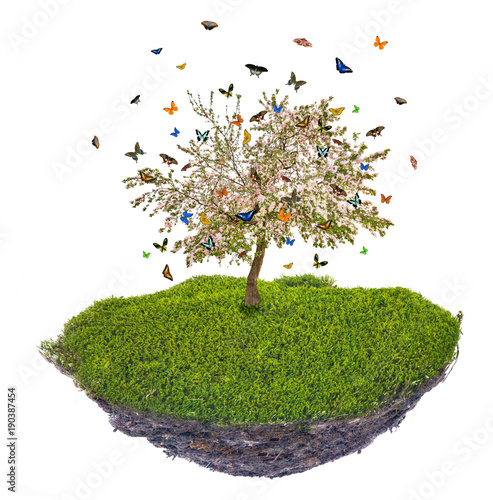 Fotobehang Gras island with butterfies above green grass and spring apple tree