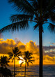 Gorgeous tropical sunrise on a beach in Kapaa, Kauai in the Hawaiian islands