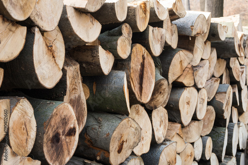 Papiers peints Texture de bois de chauffage woodpile in a deforested european forest