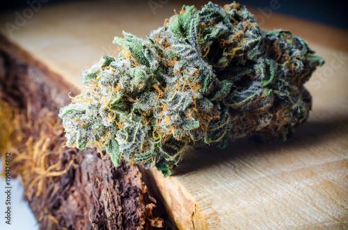 Cannabis Nugs - Strain: Electric Cherry Kola