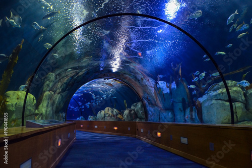 Tunel de agua en el Aquarium de Valencia (España)