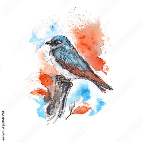 niebieski-ptak-pomalowany-akwarela