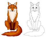 Fox colored animal page and template for coloring book.
