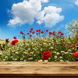 Flower meadow with wooden table and blue sky