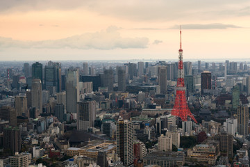 Tokyo city view with Tokyo Tower at evening in Japan. Skyscrapers in downton city.