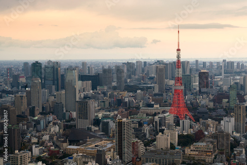 Fotobehang Tokio Tokyo city view with Tokyo Tower at evening in Japan. Skyscrapers in downton city.