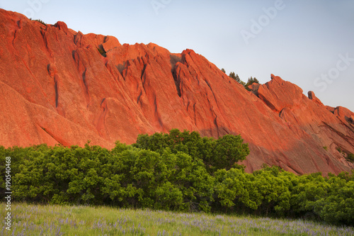 Tuinposter Baksteen Red Rock and Lupine