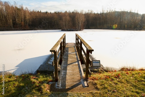 View of the winter landscape with a footbridge to the pond with an island Poster