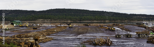 Papiers peints Photos panoramiques Panoramic view of timber and logging industry in Ladysmith, BC