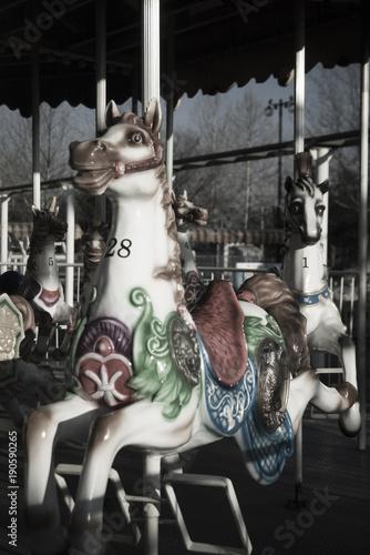 Tuinposter Amusementspark 놀이공원 회전목마