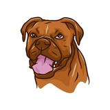 Animal Head - Dog - vector logo/icon illustration mascot - 190599242
