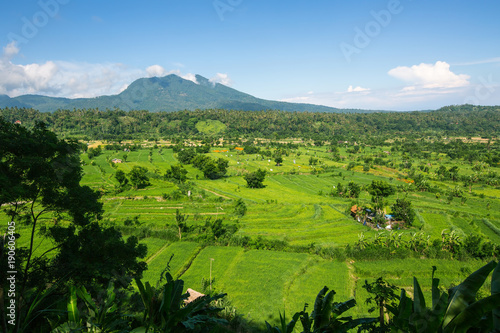 Foto op Canvas Bali Valley with rice fields on Bali island, Indonesia.