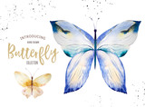 Set of watercolor boho butterfly. Vintage summer isolated spring art. Watercolour illustration. design wedding card, insect, flower beauty banner. Bohemian decoration. - 190639210