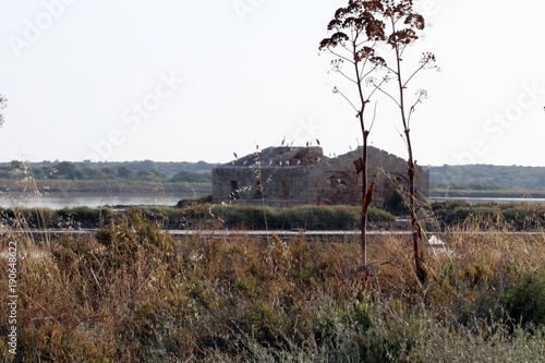 Fotobehang Diepbruine riserva naturale di vendicari, siracusa, sud della sicilia