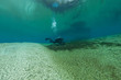 divers underwater caves diving Florida Jackson Blue cave USA
