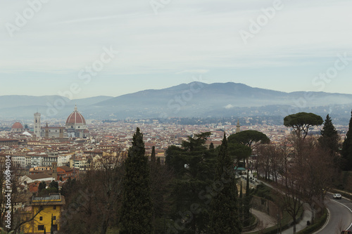 Staande foto Florence View of Florence with the Cathedral Dome