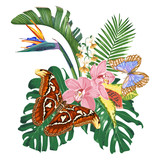 Tropical flowers, leaves and butterflies. Monstera, strelitzia, pink orchids.