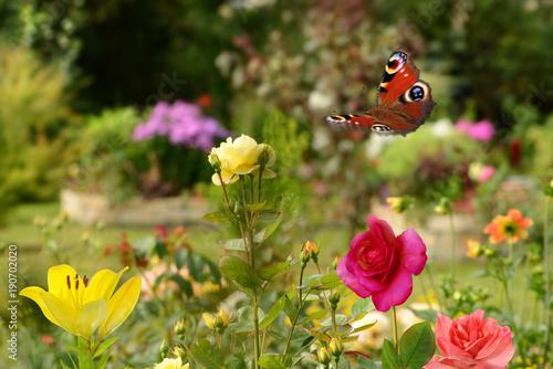 Aluminium Vlinder Schmetterling 417