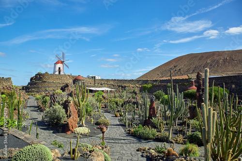 Deurstickers Canarische Eilanden Cactus garden Jardin de Cactus in Lanzarote Island