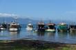 Scenic Alotau Harbor, Papua New Guinea