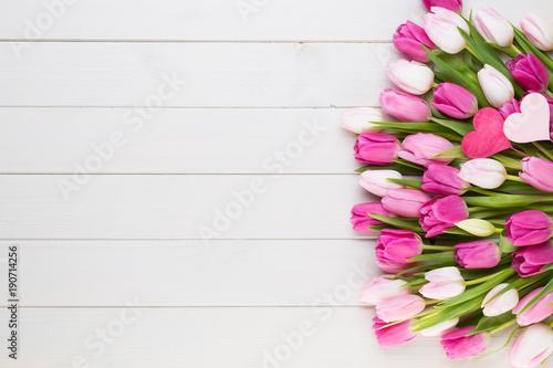 Fototapeta Pink tulip on the white background. Easter background.
