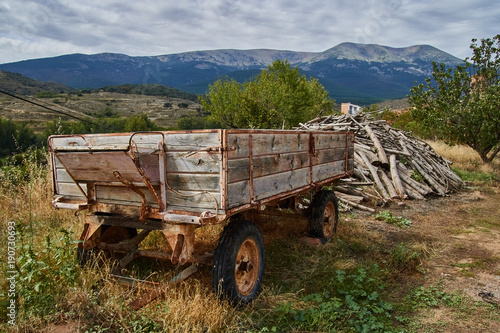 Horse cart with Moncayo mountains background in Zaragoza province, Spain