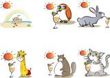 summer cartoon card set