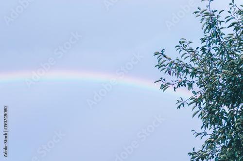 Foto op Plexiglas Herfst Rainbow In Sky