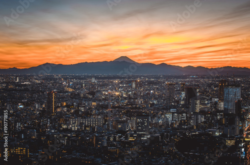 Fotobehang Tokio Tokyo skyline and buildings from above, view of the Tokyo prefecture with fuji mount in the background